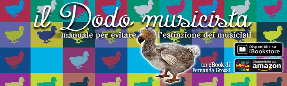 Il Dodo Musicista