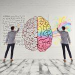 cervello dx-sx
